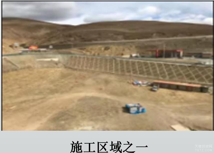理塘县等县市绿化与植树关键技术研究及植物种质资源圃建设项目股权融资500万元